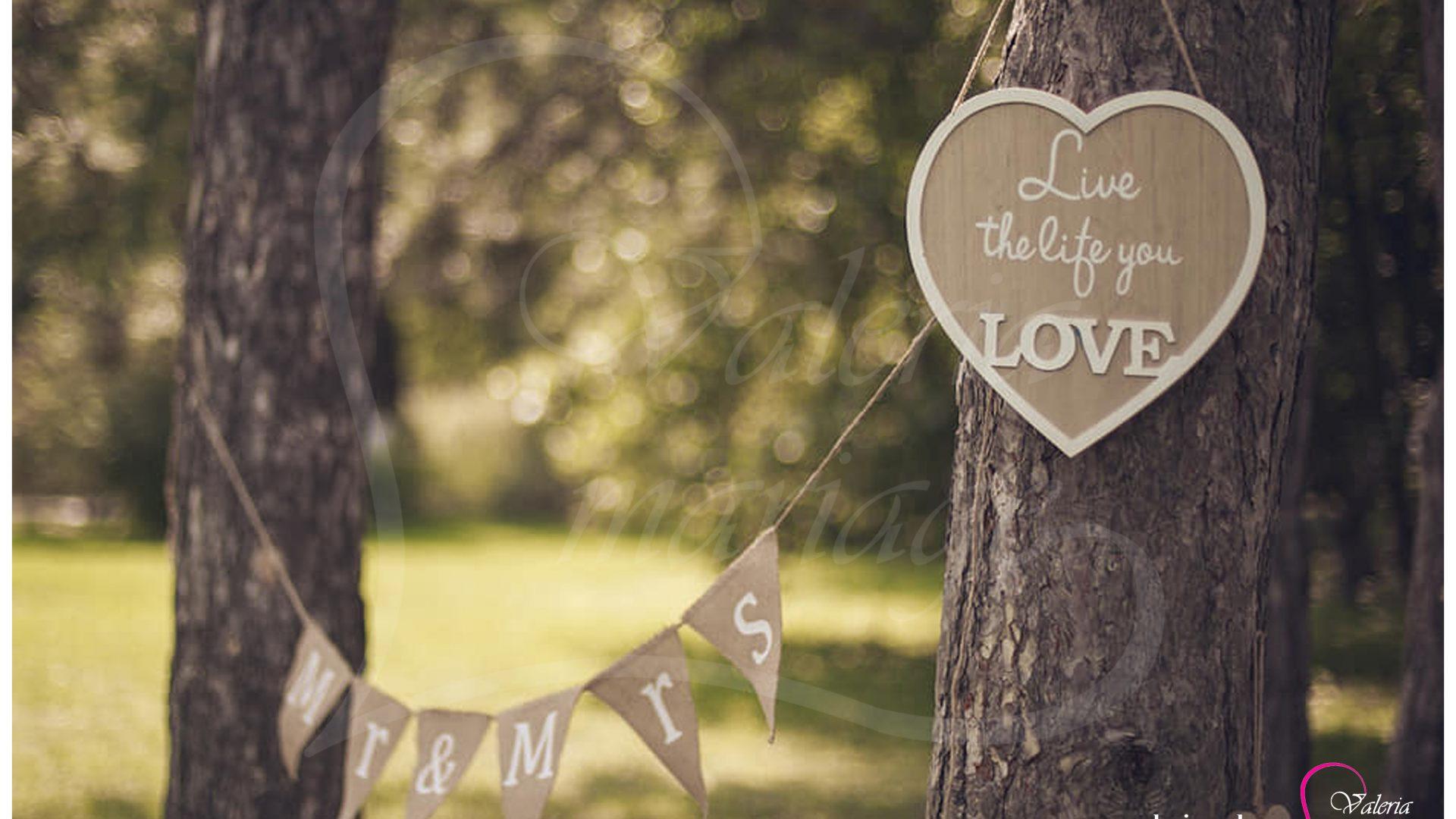 Inregistrarea casatoriei sub cerul liber Agentia Valeria Mariage 069787665 www.valeria (8)
